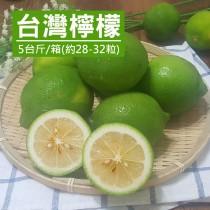 【產地直送】南投竹山有籽檸檬5台斤X1箱(約28-32顆)-(免運)