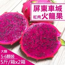 【產地直送】屏東車城紅肉火龍果5斤X2箱(約5-6顆/箱)-(免運)