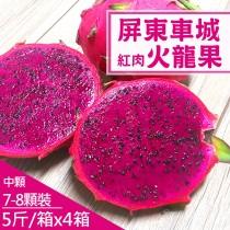 【產地直送】屏東車城紅肉火龍果5斤X4箱(約7-8顆/箱)-(免運)